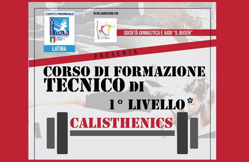 calisthenics copertina